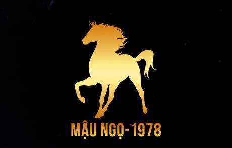 1978 mau ngo 1
