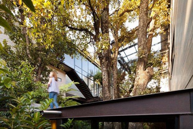 Ngôi biệt thự kính hiện đại La Casa el Bosque ở Mexico
