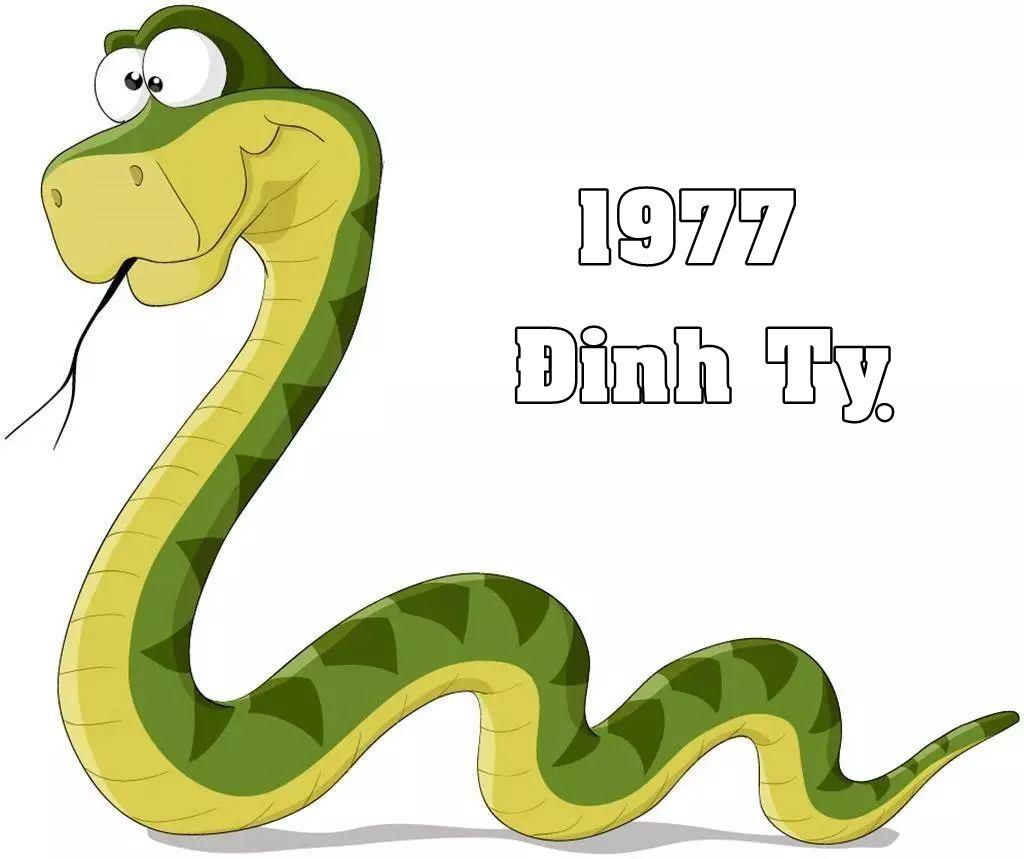 tu vi tuoi dinh ty 1977
